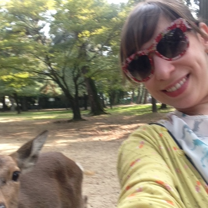 Dicas do Japão - veados de Nara1