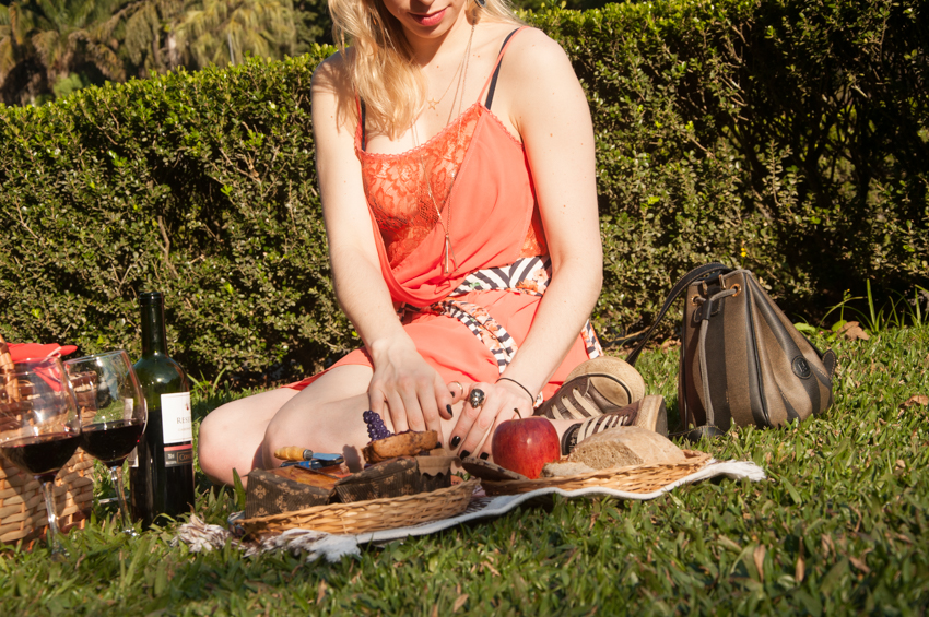 picnic no parque-12
