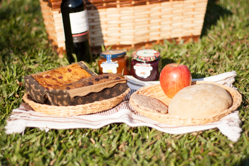picnic no parque-27