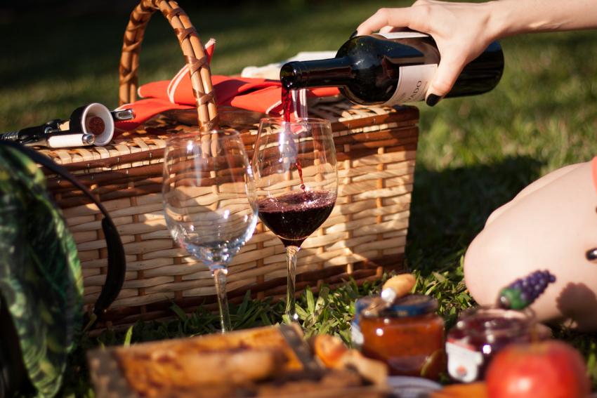 picnic no parque-34