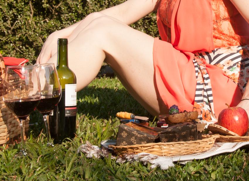 picnic no parque-4